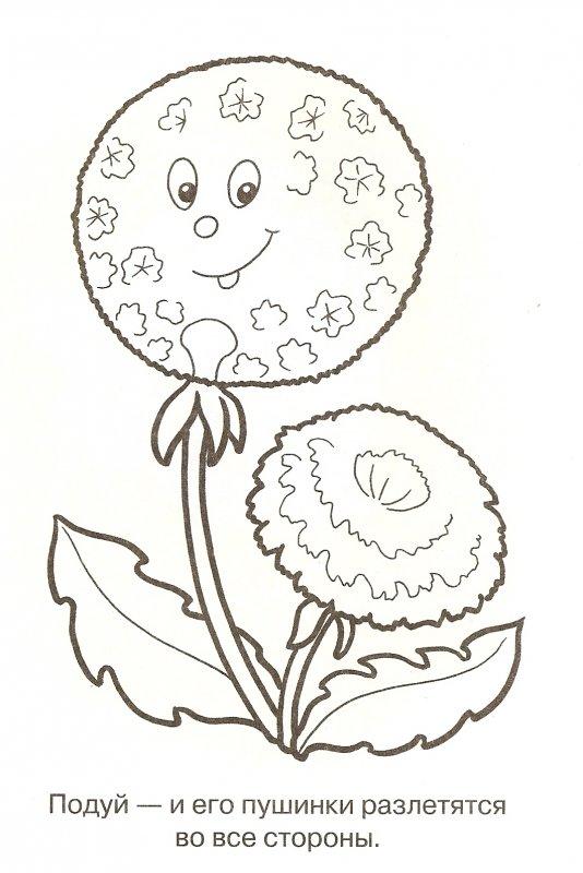 Раскраска цветок для детей 4 лет
