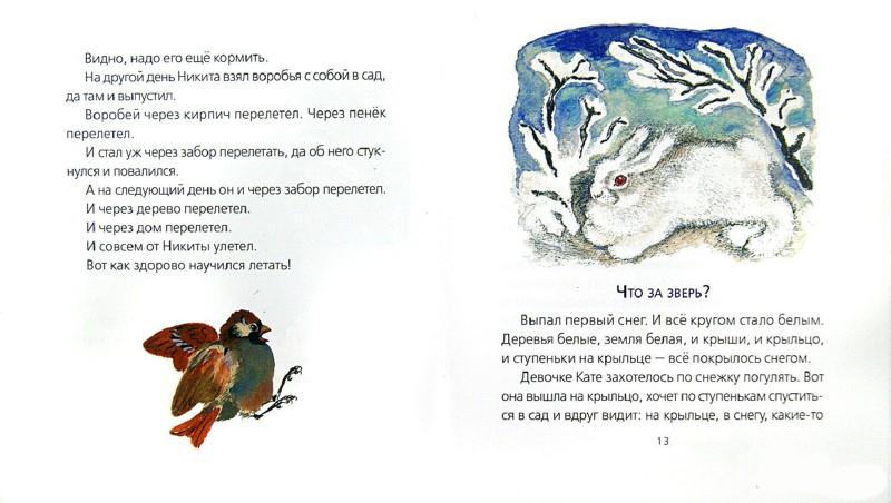 Рисунки к рассказу чарушина волчишко